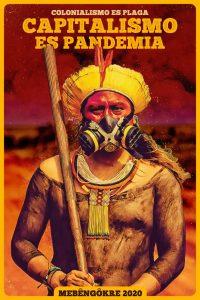 Pandemia, derechos y pueblos indígenas